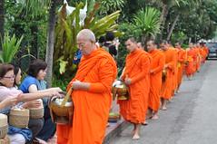 An elderly monk receives his rice (oldandsolo) Tags: southeastasia earlymorning buddhism tourists lp laos luangprabang buddhistmonk laopdr makingmerit unescoworldheritagecity buddhistreligion takbat buddhistfaith morningalmsgivingritualluangprabang morningalmsgivinginluangprabang