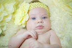 untitled-75-Edit-3.jpg (O.G. Ljósmyndun) Tags: family portrait baby girl barn infant stelpa hrund