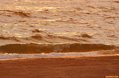 SummerWave (mcshots) Tags: ocean california travel sunset sea usa beach nature water evening coast sand waves glow stock shoreline playa socal summertime breakers mcshots swells losangelescounty