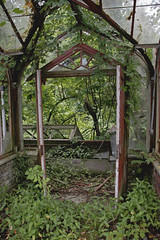 IMG_9682 (Jeffrey Terranova) Tags: newyork abandoned graffiti greenhouse urbanexploration bti yonkersny boycethompsoninstitute canonrebelxsi