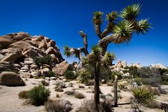 (Francesco | Ceron) Tags: california usa flickr unitedstatesofamerica vacanza efs1022mmf3545usm canoneos7d fotofrancescoceron