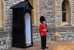 665.jpg (michael mocatta) Tags: uk greatbritain holiday london tower english flickr londoneye buckingham redcoat gurad