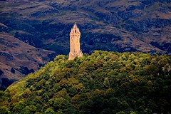 Stirling, Scotland 2014 (bnicoll2020) Tags: light summer sun tower castle forest woodland scotland stirling flag wallace wallacemonument saltire