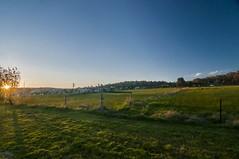 Retreat! (Wajahat Mahmood) Tags: shadow grass sunshine day meadow australia melbourne victoria clear pasture suburb southmorang millparklakes