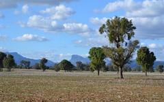 CLEARVALE & YOULBUNG, Tooraweenah NSW
