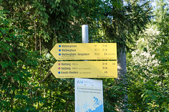 "Wandern auf den Wallberg • <a style=""font-size:0.8em;"" href=""http://www.flickr.com/photos/89298352@N07/14785765638/"" target=""_blank"">View on Flickr</a>"
