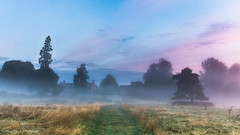 A rose tinted morning (Andy Hough Photography) Tags: morning pink blue trees england sky mist grass dawn still colours purple unitedkingdom sony serene pathway a77 churchmeadow southoxfordshire littlewittenham sonyalpha andyhough slta77 andyhoughphotography