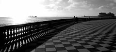 pi nero che bianco, ma... (balenafranca) Tags: blackandwhite italia bn toscana livorno biancoenero terrazzamascagni