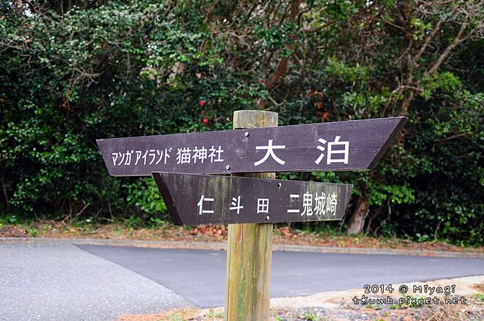 2014田代島11.jpg