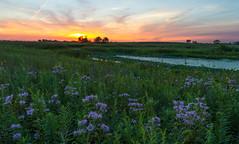 IMG_4958.jpg (wwang5) Tags: sunset illinois unitedstates naperville springbrook dupagecountyforestpreserve springbrookforestpreserve