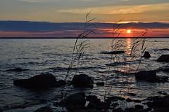 Pyhselk - Finland (s.niemelainen) Tags: sunset lake beach nature suomi finland landscape maisema finlandia joensuu luonto ranta jrvi auringonlasku karjala pyhselk pohjois