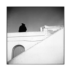 the shadow • essaouira, morocco • 2014 (lem's) Tags: shadow white man rolleiflex port ombre morocco maroc walls essaouira murs homme planar blancs