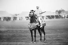 Fantazia Ryder (aminefassi) Tags: travel portrait people blackandwhite bw copyright horse sport cheval noiretblanc action culture morocco maroc tradition ryder rider cavallo rabat 6d fantazia baroud equestre temara rabatsal ef70200mmf28isii ainatiq aminefassi aminefassicom