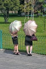 Umbrellas in Pyongyang (Ray Cunningham) Tags: fashion umbrella women north korea pyongyang dprk coreadelnorte 평양