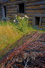 Wire, Weeds & Windows (stevenbulman44) Tags: wood summer holiday field barn canon log wire barbedwire shuswap 1740f40l