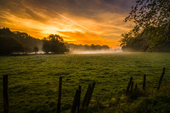 Sunrise (dkphotographs) Tags: morning autumn trees red sky orange sun sunlight fall nature beautiful field yellow misty fog clouds rural sunrise fence landscape countryside wildlife country foggy hazy sonyslta57 sonyalpha57