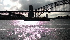 Sydney afternoon