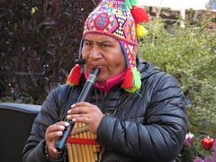 Street Folclore Performer - Motomachi, Kobe (February 2014) (Ogiyoshisan) Tags: people music men japan person japanese live performance kobe andes 日本 performer motomachi 神戸 元町 folclore 音楽 streetsnap