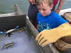 Crabbing program at Belle Isle State Park (vastateparksstaff) Tags: crab kid boy program interpretive