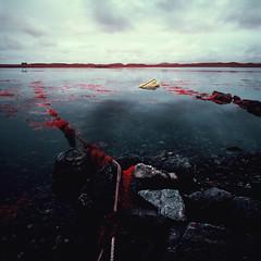 Capsized on Loch Ceann Hulabhaig (Mark Rowell) Tags: infrared ir eir aerochrome isleoflewis lochceannhulabhaig scotland hasselblad 903 swc 6x6 120 mediumformat expired film