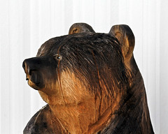 Bear Wood Carving (Brian 104) Tags: bear wood carving reservation northbay