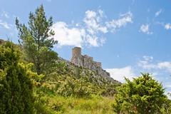 Queribus (Falcov) Tags: france landscape ruin chateau aude francia cathare ruines queribus cathares falcou falcov
