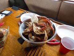 Crab harvest, after