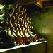 moulin, Vosges,  Xamontarupt,  saboterie,  visite,  patrimoine,  Haut-fer, tourisme, Vallons des Vosges