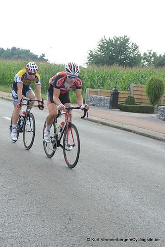 Geel Oosterlo  (258)