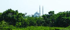 Cairo Citadel (NOX.DESIGN) Tags: green citadel egypt cairo cairocitadel saladincitadel