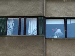 Henriette von Muenchhausen 02 (malidinapoli) Tags: netherlands 2014 henriettevonmuenchhausen