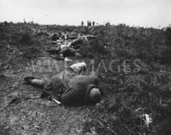 WWI2362GP (ww1images) Tags: dead soldier shot equipment killed scrub troops turkish bloated sandbag puttee greatcoat mowndown unburried