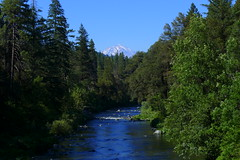 Mt. Shasta and the Sacramento River