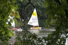 I am Sailing (Bjrn S) Tags: gteborg sailing segling trdgrdsfreningen sigma7020028 kulturkalas nikond610