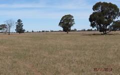 . 'Speedwell', West Wyalong NSW