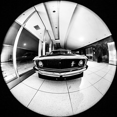 A Day in the Life (Thomas Hawk) Tags: usa ford unitedstates michigan unitedstatesofamerica detroit autoshow mustang fordmustang naias dearborn northamericaninternationalautoshow cobohall cobocenter fav10 fordheadquarters fordnaias naias2012 northamericaninternationalautoshow2012
