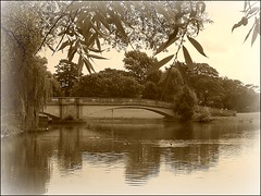 Old Bridge ... (** Janets Photos **) Tags: uk sepia stonework lakes bridges hull spans publicparks opengroup cloudsonflickr