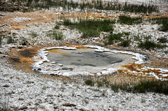 Unnamed hot spring 20 meters SSE of Heart Spring (8 July 2014) (James St. John) Tags: hot volcano spring heart hill group basin upper springs yellowstone wyoming geyser unnamed