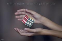 Lo único imposible es aquello que no intentas (Ali Llop) Tags: blue red colors azul happy rojo hands manos colores cube feliz cubo rubik