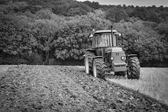 The ploughing match-13.jpg (Winniepix) Tags: county blackandwhite horse love field sussex mono earth farm country farming working match plow hay shire agriculture heavy society brass halter share plough tender mane agricultural bridle ploughing burwash heavyhorse countrypursuits southerncounties seamer countrysports bivelham espms