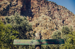 Zarar verme (Melissa Maples) Tags: sign turkey nikon asia text trkiye cliffs nikkor vr afs  trke 18200mm butterflyvalley  f3556g  18200mmf3556g kelebeklervadisi d5100