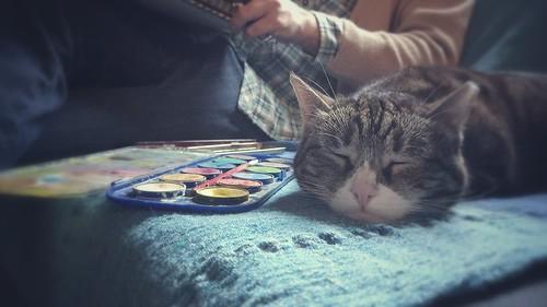 Asma, gatto protettore delle arti pittoriche.