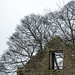 Wintering trees seen through the eyes of history (MikeONeil) Tags: winhill ruin tree winter
