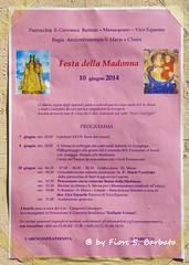 Vico Equense (NA), 2014, Festa di Santa Maria a Chieia. (Fiore S. Barbato) Tags: italy campania maria madonna fiori petali vico vicoequense penisola processione equense sorrentina massaquano chieia