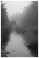 *** (Spartaxus) Tags: road mountains fog kodak tmax plash beskidy