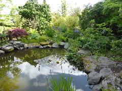 Inverness Botanic Gardens (IrenicRhonda) Tags: lake public june geotagged scotland highlands pond unitedkingdom escocia loch done inverness botanicgardens schottland ecosse 2014 gbr floralhall highlandsandislands p4m redbubble craigdunain ballindallochcastle lascozia  invernesscentralward invernesswestward geo:lat=5746273889 geo:lon=424058889 invernessbotanicgardens httpwwwinvernessfloralhallcom