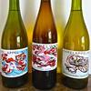 20140609 Karels (enemyke) Tags: apple wine bottles manzana appel vin vino karel karelappel wijn flessen botellas applewine karels pixeldiary appelwijn karelappelwijn