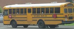 Student Bus Co. #526 (ThoseGuys119) Tags: ic fe schoolbus minibus thomasbuilt springvalleyny thetransgroup studentbuscoinc