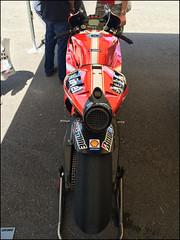 Ducati GP10 - Casey Stoner (lewis wilson) Tags: cars bikes racing ducati 27 fos goodwood thehill festivalofspeed goodwoodfestivalofspeed caseystoner 798cc goodwoodfestivalofspeed2014