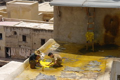 Dyeing By Hand (Keith Mac Uidhir  (Thanks for 3.5m views)) Tags: morocco fez maroc marocco marruecos marokko moroccan fes marrocos fas marocko fs marokk     maghribi marako           mrk maruekos